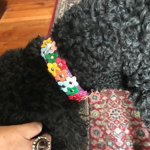 Colourful Floral Dog Collars